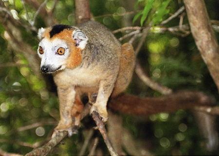 Madagascar_044-1.jpg
