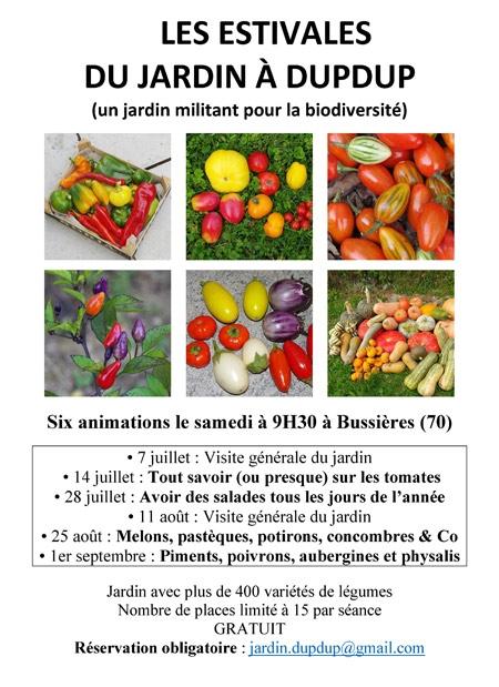 Estivales-du-jardin-de-Dupdup-450.jpg
