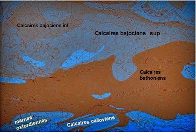 CarteGeologie_Palente2-1.jpg