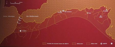 Mucem_30-01-2014_223-royaume-maure-de-Juba-II-450.jpg