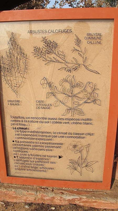 Roussillon_déc 2011_711.jpg