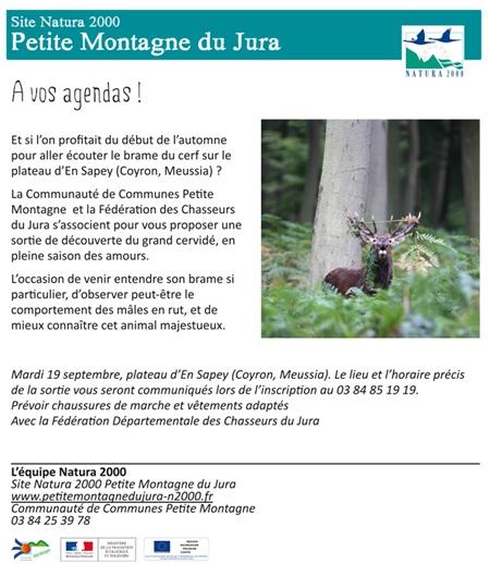 Petite-montagne-du-Jura-450.jpg