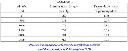 TABLEAU-II-450.jpg