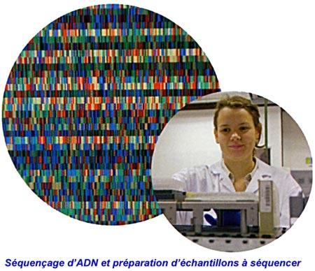 médecine,génomique