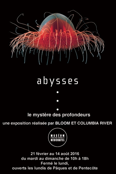 Abysses-affiche_Page_1-450.jpg