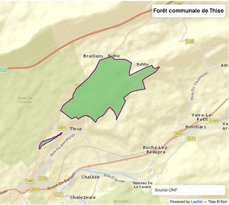Fig.-01-Forêt-communale-de-Thise-450.jpg