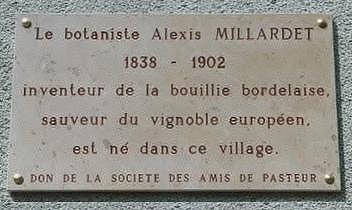 Millardet-plaque.jpg