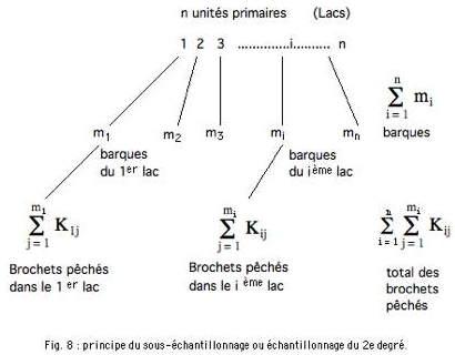 Fig 8-1.jpg