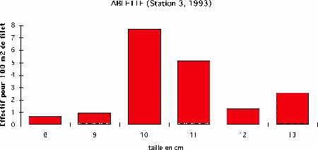 ablette-N-3-93-1.jpg