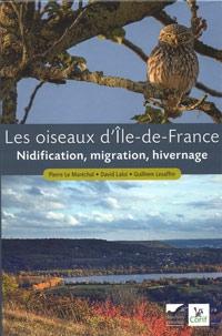 Oiseaux-Ile-de-France-200.jpg