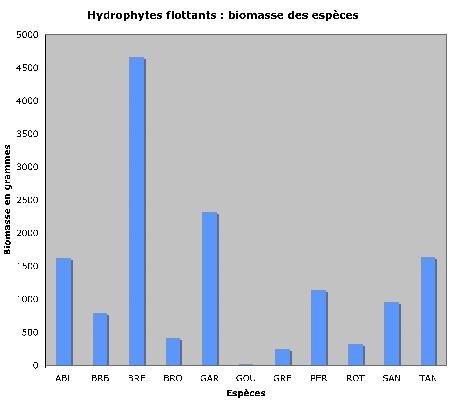 hydrophytes-poids_d+m1.jpg