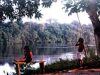 Guyane23.jpg