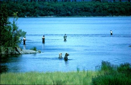 Alaska-4-Pecheurs&ours©PatrickCabrol_1993-450.jpg