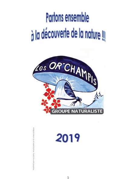 calendrier orchampis 2019_Page_1.jpg