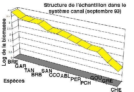 structure échantillon canal-93-1.jpg