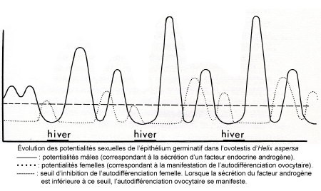 Fig_R_potentialités_sexuelles1.jpg