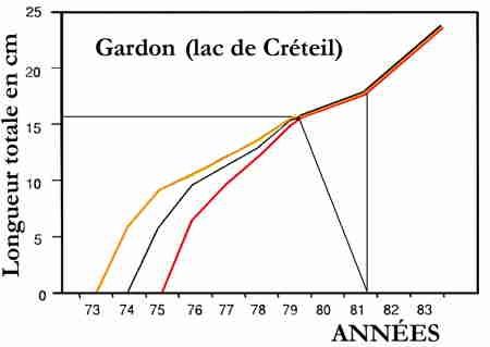 lacs_gardon_créteil_015-1.jpg