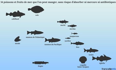 14-poissons-et-fruits-de-mer-que-l'on-peut-manger-sans-risque-d'absorber-ni-mercure-ni-antibiotiques-450.jpg
