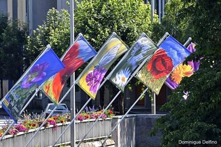 4. Montbéliard fleuri-450.jpg