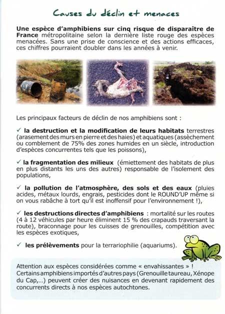 amphibiens,amphibiens de france,aspas