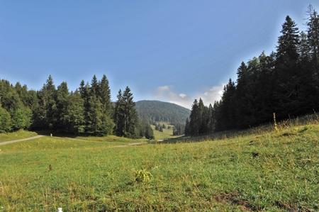 Europe-Suisse-Mollendruz-Croix de Châtelans Panorama N-O depuis le Bois de Pétra Félix-Rémi Brendel-450.jpg