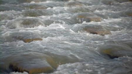 poissons,rivière,pêche,doubs,rhône,loue,durance,ardèche,drôme