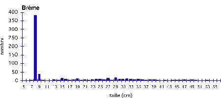 Brème_échantillon-moyen_Doubs-1.jpg