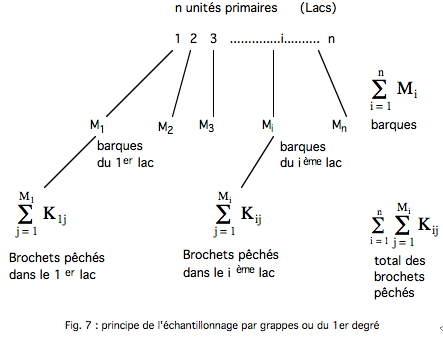 Fig 7-1.jpg