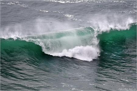 dominique delfino,océan atlantique,tempête carmen,vagues,