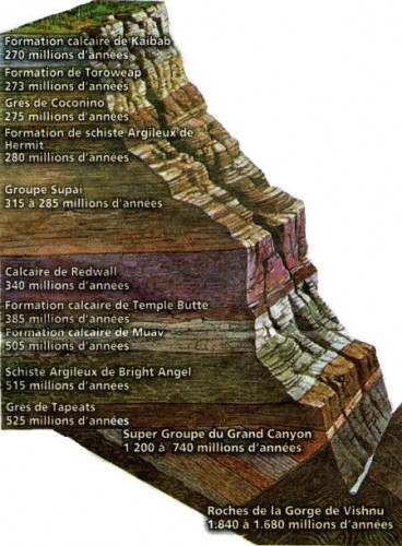 08-Grand_Canyon_stratigraphie.jpg