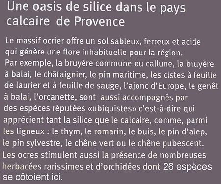 Roussillon_déc 2011_701.jpg
