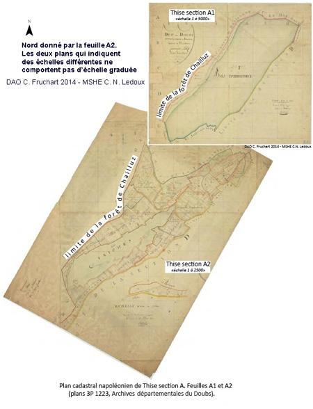 thise,forêt de thise,forestologie,sylviculture,jura,hêtre,chêne,office national des forêts,écologie forestière