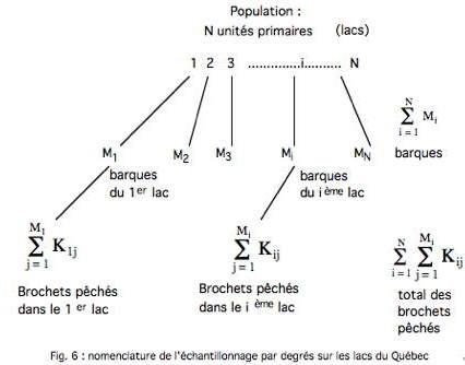 Fig 6-1.jpg