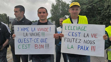 Cause-animale-la-Roche-sur-Yon_02-450.jpg