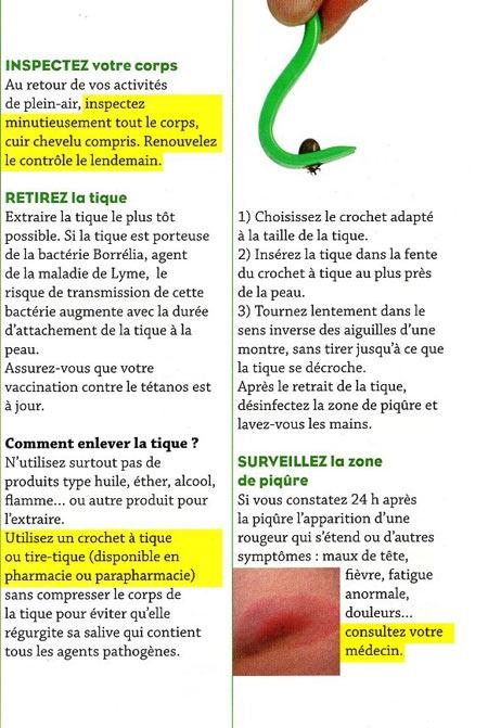Plaquette-tiques_3-450.jpg