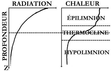 1.lacs-stratification thermique-1.jpg