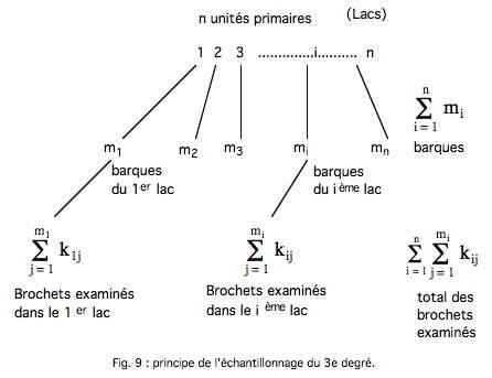 Fig 9-1.jpg