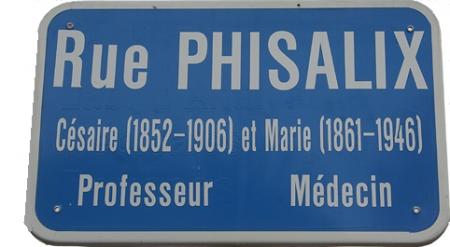 rue phisalix-blog.jpg