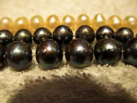 Moules-perlières04-1.jpg
