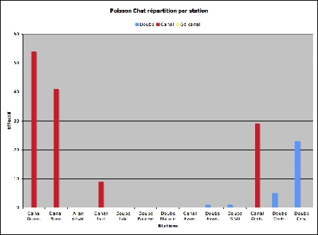 Poisson chat-stations_effectif-1.jpg