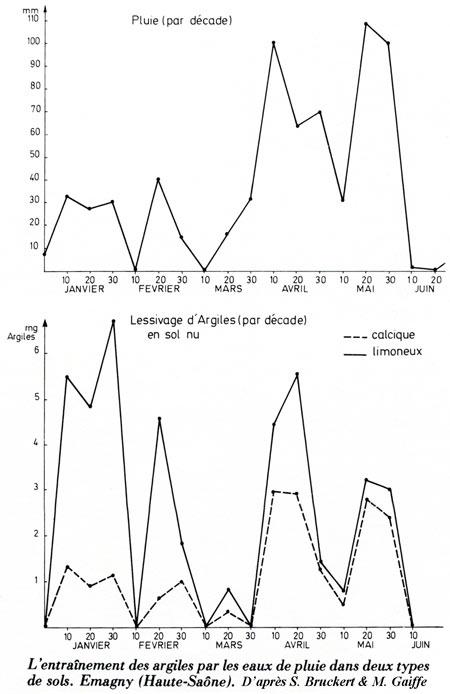 Fig.01_Entraînement-des-argiles-par-les-eaux-de-pluie-450.jpg