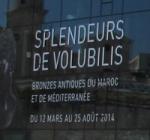 Mucem_splendeurs-de-Volubilis-logo.jpg