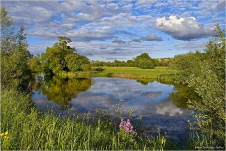 pêche,poissons,allan,doubs,canal à grand gabarit,habitats,montbéliard,pays de montbéliard