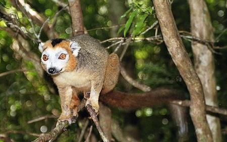 Madagascar_045-1.jpg