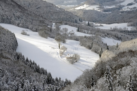Delfino-Fondereau-hiver_02-450.jpg