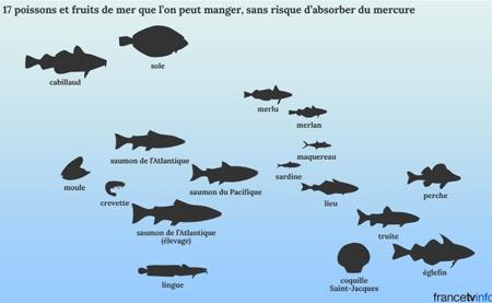 17-poissons-et-fruits-de-mer-que-l'on-peut-manger-sans-risquer-d'absorber-du-mercure-450.jpg