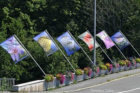 3. Montbéliard fleuri-450.jpg
