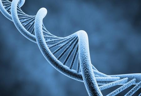 ADN-450.jpg