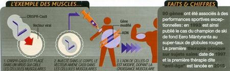 Crisp_013-Exemple-des-muscles-450.jpg