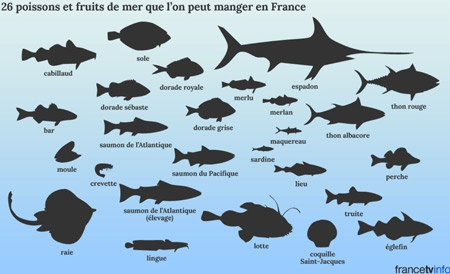 26-poissons-et-fruits-de-mer-que-'on-peut-manger-en-France-450.jpg
